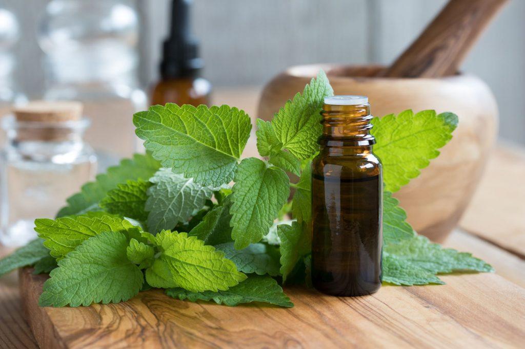 huile essentielle anti moustique huile essentielle anti moustique